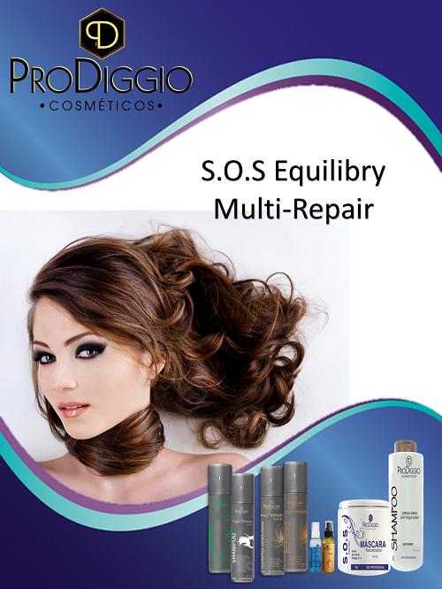 S.O.S Equilibry Multi-Repair